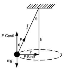 tension diagramme conical pendulum its time period  tension in string  numerical  conical pendulum its time period